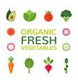 organic fresh vegetables collection of flat vector image