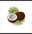 coconut logo icon vector image