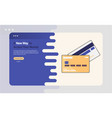 credit card advertising vector image vector image