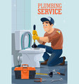 plumber with toilet plunger wrench and spanner vector image
