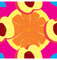 Seamless Fruit Citrus Pattern vector image vector image