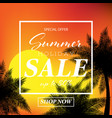 summer holiday sale banner vector image vector image