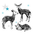 3 hand drawn badeers in vintage style vector image vector image