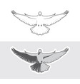 dove birds logo vector image