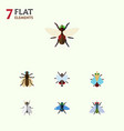 flat icon fly set of buzz tiny hum and other vector image