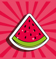 fresh watermelon delicious fruit drawing sticker vector image