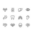 human internal organs line set icons medical vector image vector image
