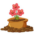 red flowers in brown bag on white background vector image vector image