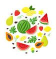set summer fruits in flat design vector image