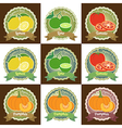 Set of fresh fruit and vegetable badge sticker tag vector image
