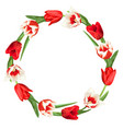 decorative element with red and white tulips vector image vector image