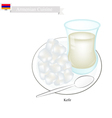 Kefir or Armenian Fermented Milk with Sour Flavor vector image vector image