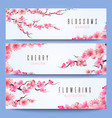 wedding banners template with spring japan sakura vector image vector image