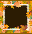 Autumn background layout decorate leaves shopping
