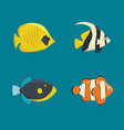 collection - four saltwater fishes vector image vector image