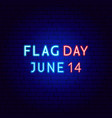 flag day neon text vector image vector image