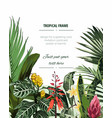 frame with monstera and palm leaves vector image vector image
