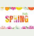 hello spring flowers design in text background vector image