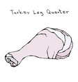 raw turkey leg quarter realistic vector image vector image
