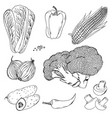 vegetables corn mushrooms doodle vector image