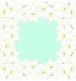white amaryllis border vector image vector image