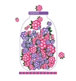 Jar with fruit jam for your design vector image