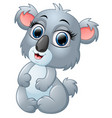happy koala cartoon isolated on white background vector image