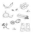 herbs and spices hand drawn vector image vector image