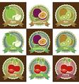 Set of fresh fruit badge sticker tag vector image