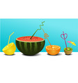 summer fruit juice vector image vector image