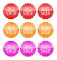 banner big discounts vector image