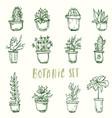 botanic set cactus flowers vector image