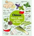 Chinese herbs and spices vector image vector image
