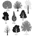 Trees vector | Price: 3 Credits (USD $3)