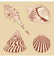Vintage Shells Set EPS10 vector image vector image