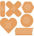 adhesive plaster vector image vector image