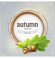 background image for big autumn sale with oak vector image