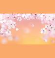 beautiful print with blossoming light pink sakura vector image