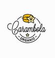 carambola fruit logo round linear vector image