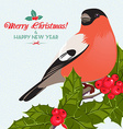 Christmas background and greeting card with vector image