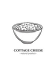 engraving cottage cheese icon vector image vector image