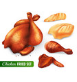 fried chicken set vector image