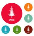 larch tree icons circle set vector image vector image