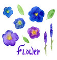 lavender and viola watercolor collection violet vector image