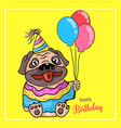 puppy pug and a balloon birthday on yellow vector image vector image
