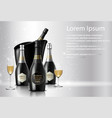 wineglass with a bottle of champagne in a bucket o vector image vector image