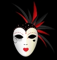 carnival dark mask vector image vector image