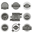 Collection of Premium Quality Labels with retro vector image vector image