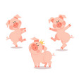 cartoon dancing little pig year pig vector image