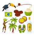 collection of different brazilian symbols vector image